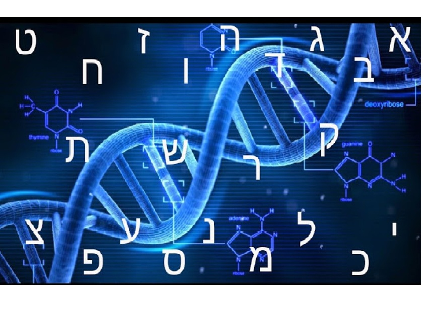 DNA-OTIOT